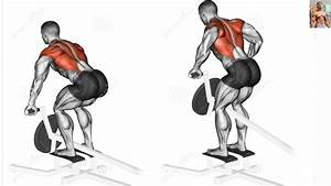 Bodybuilding Exercises   Best Back Workouts For Mass
