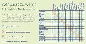 Welche Kräuter Passen Zusammen Tabelle : tipps f rs perfekte gem se dehner ~ Frokenaadalensverden.com Haus und Dekorationen