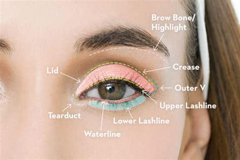 apply eyeshadow  eye makeup tutorial