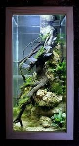 Stunning Aquarium Design Ideas For Indoor Decorations  23