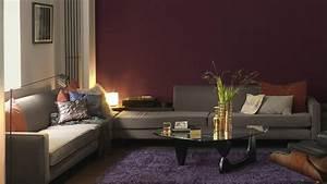 choisir sa peinture pour un salon chaleureux et cosy With couleur pour un salon