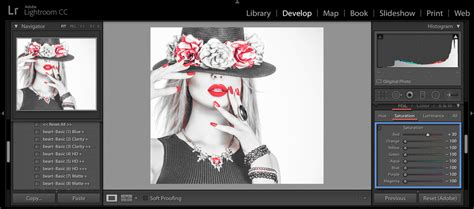Coloring Lightroom by How To Create Black And White With Selective Color In