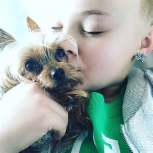 Jojo Siwa Bows Dog