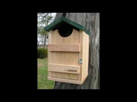 screech barn barred owl boxes  sale youtube