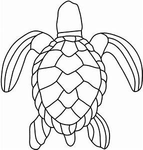 Turtle Shell Patterns - ClipArt Best