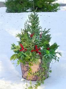 Weihnachtsdeko Im Außenbereich : ideen f r lebende weihnachtsdekoration ~ Markanthonyermac.com Haus und Dekorationen