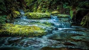 Blue Mountains Australia Intact Nature Mountainous River
