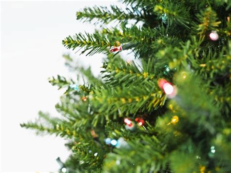 waste management christmas trees santee review recycle your tree