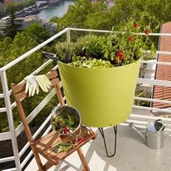 potager en pot balcon potager balcon notre s 233 lection