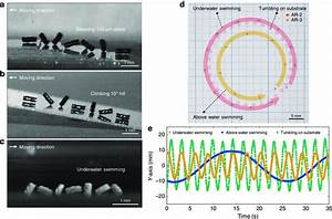 Multifunctionality Of 3d Helical Spinbots  A