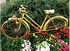 Free photo Flowers, Bicycle, Flower Bed, Bike Free