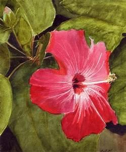 Bunny's Artwork: Hibiscus Flower Watercolor Painting