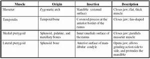Trigeminal Nerve Chart Principles Of Human Anatomy And Physiology Chapter 9