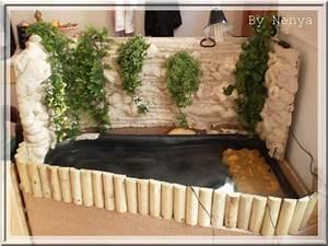 Bac à Poisson Extérieur : bassin d interieur bassin d interieur sur enperdresonlapin ~ Teatrodelosmanantiales.com Idées de Décoration