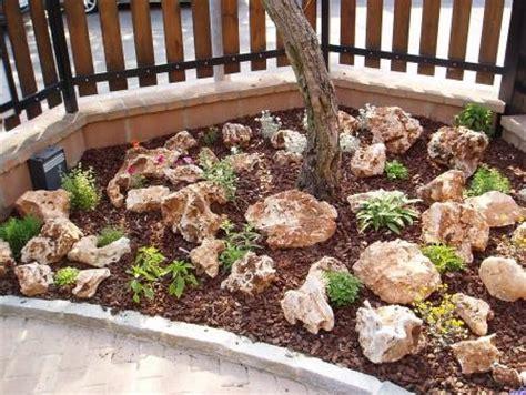 pietre per giardino roccioso costruire un giardino roccioso come e dove realizzarlo