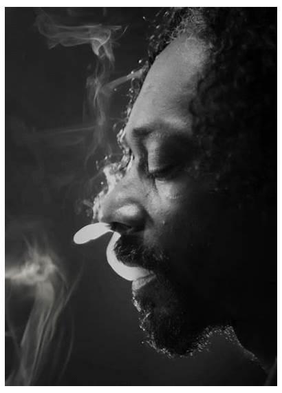 Smoke Weed Lion Lyrics Genius