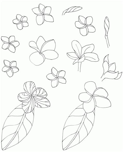Coloring Roots At Home by Flowers With Roots Coloring Home
