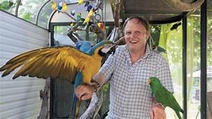 Menagerie Mots Fleches : dans l 39 univers d 39 un passionn d 39 oiseaux exotiques generations ~ Medecine-chirurgie-esthetiques.com Avis de Voitures