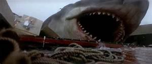 Jaws (1975) Movie Review - 2020 Movie Reviews