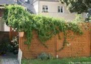 Teichumrandung Aus Stein : steingarten anlegen neue ideen f r ihren garten garten hausxxl garten hausxxl ~ Yasmunasinghe.com Haus und Dekorationen