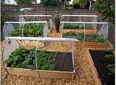 Soil Backyard Vegetable Garden House Design With Wood