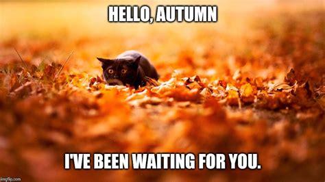 Autumn Meme - image result for autumn meme october 15 pinterest meme