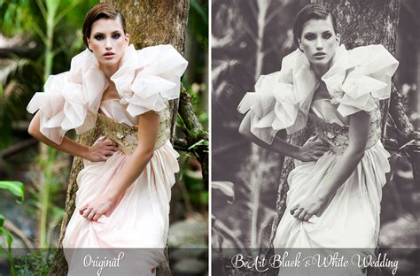 bundle lightroom presets photoshop actions