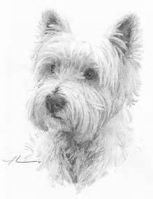 Westie Dog Drawings