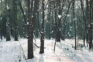 snowflake photography | Tumblr