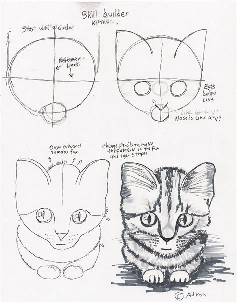 adrons art lesson plans   draw  simple kitten