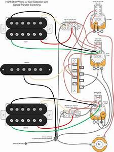 Hsh Wiring Diagram For Stratocaster