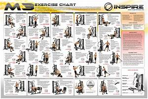 Exercise Program  Exercise Program Using Home Gym