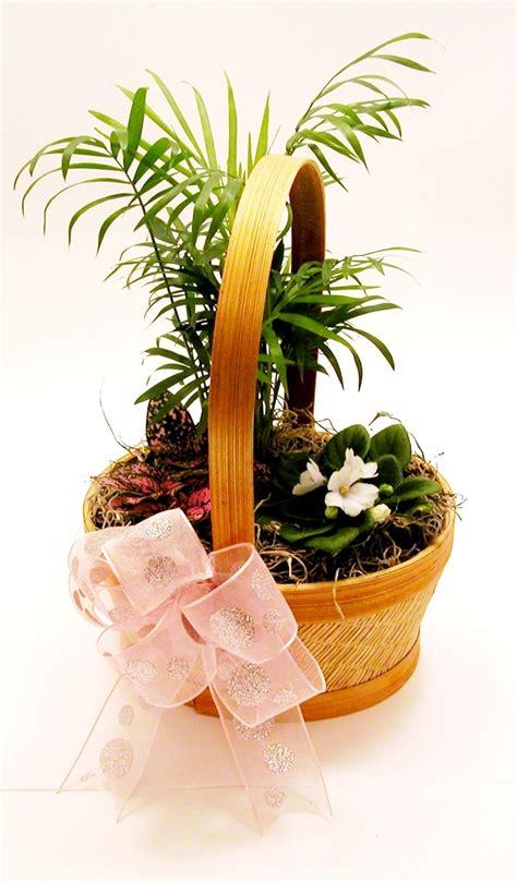 potted plant arrangements potted flowers arrangement my floral arrangements pinterest