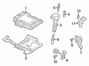 Ford Taurus Bolt  Sensor  Water  Crankshaft  Camshaft
