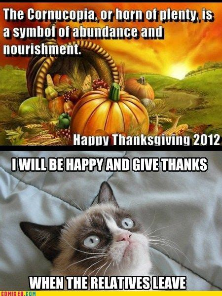 Thanksgiving Cat Meme - 6759 best images about quot 1 tard quot on pinterest gift quotes memes humor and grumpy cat quotes