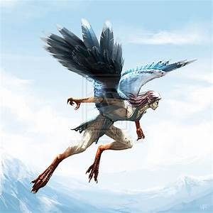 Harpy by highdarktemplar on DeviantArt