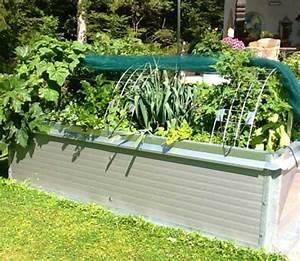 Hochbeet Blumen Bepflanzen : tomaten anbauen ~ Watch28wear.com Haus und Dekorationen