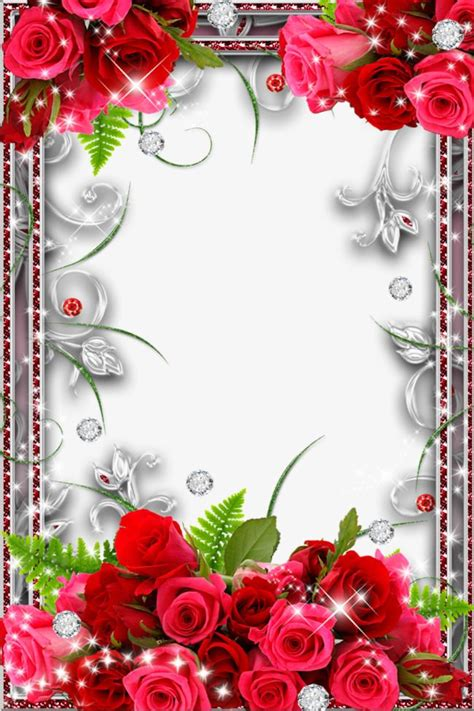 rose border stock  flower frame picture borders
