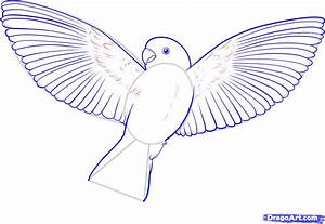 How To Draw A Flying Bird How To Draw A Bird Step By