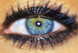 265 best images about Heterochromia Awesome! on Pinterest ...