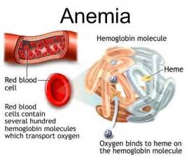 Anemia Disease Definition