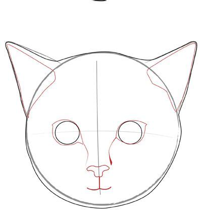 draw  realistic cats face meow meow cat face drawing