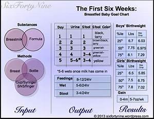 Bottle Feeding Baby Chart Weight Gain Six Forty Nine