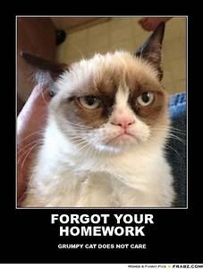 @Kate Mazur Brue FORGOT YOUR HOMEWORK... - grumpy cat Meme ...
