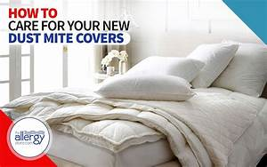 How To Care For Dust Mite Covers  Washing And Care