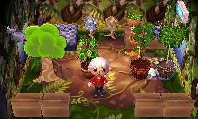 Jungle Wallpaper Animal Crossing - sly animal crossing wiki fandom powered by wikia