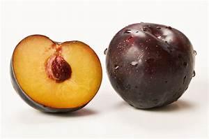 Ciruela Sercom Logística S L Comercialización de frutas y hortalizas de temporada Amplia