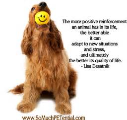 Positive Reinforcement Dog Training Quotes