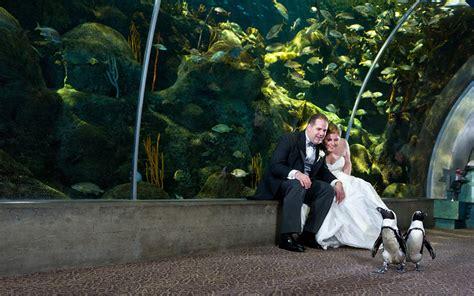 Navy & Pink Tampa Destination Wedding The Florida