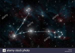 An artist's depiction of the constellation Pisces the Fish ...